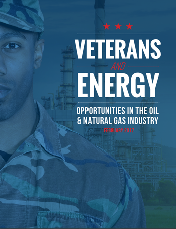 Veterans and Energy Report